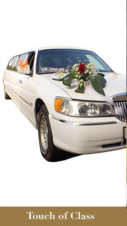 Touch of Class Limousine